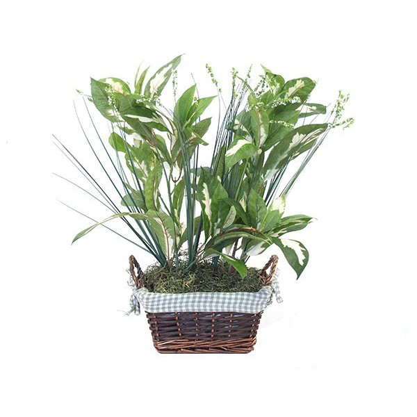 HIDDEN CAMERA PLANT | HD 1080P | LOW LIGHT B/W | BATTERY POWERED | BUILT-IN DVR | $549.00