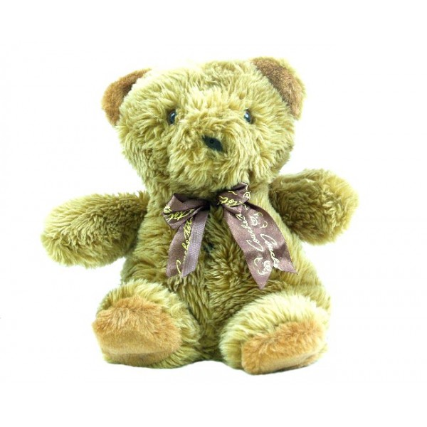 HIDDEN CAMERA TEDDY BEAR | HD 1080P | HIGH RESOLUTION COLOR | BUILT-IN DVR | $549.00